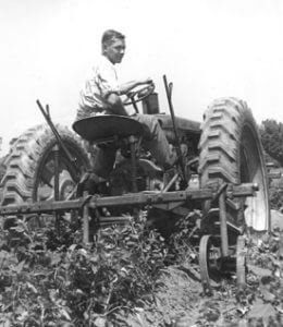 Working on the farm, 1950s.