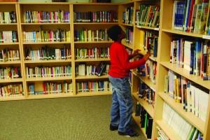 Library shot DSC 0552